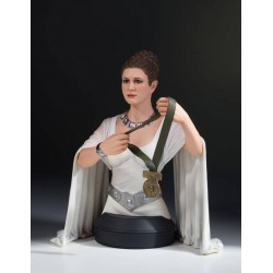 Star Wars A New Hope buste 1/6 Leia Hero of Yavin 17 cm