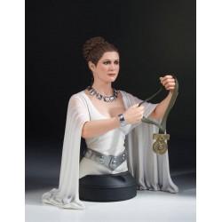 Star Wars A New Hope buste 1/6 Leia Hero of Yavin 17 cm