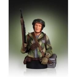 Star Wars buste 1/6 Endor Trooper 18 cm