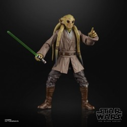 Figurine Star Wars Black Series 15cm Kit Fisto