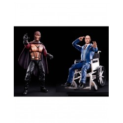 Marvel Legends 2-Pack Proffessor X & Magneto 15 cm 20Th