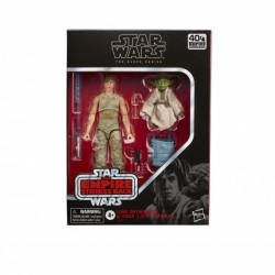 Star Wars Episode V Black Series pack 2 figurines 2020 Luke Skywalker and Yoda (Jedi Training)