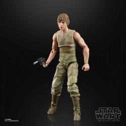 Star Wars Episode V Black Series pack 2 figurines 2020 Luke Skywalker and Yoda (Jedi Training)