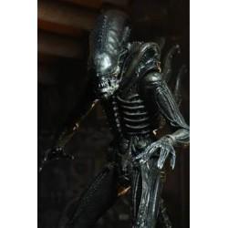 Alien 18 cm 40th Anniversary série 3 Xenomorph
